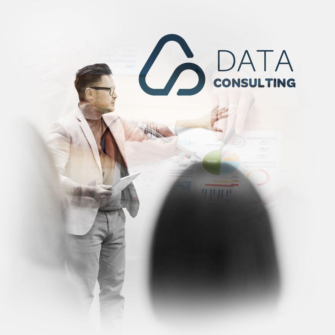 NoseDat Data Consulting